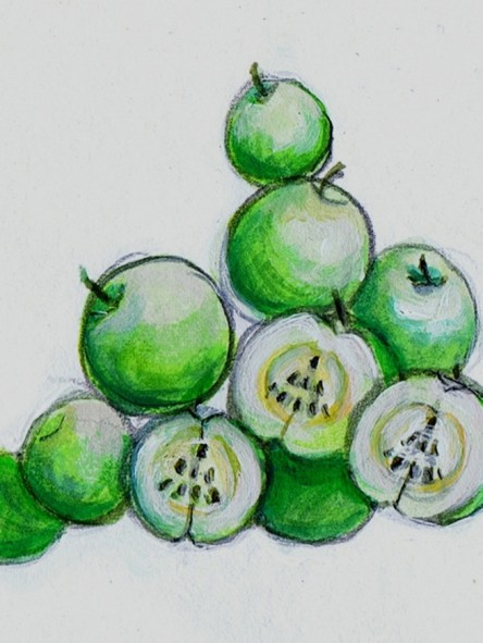 kds green apples holidays (1) 2