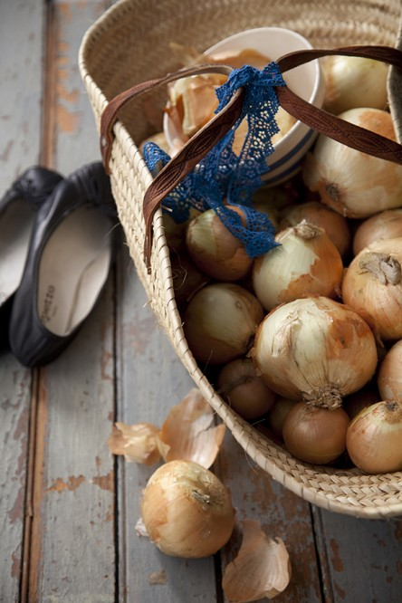 Basket of Vidalia Onions and Repetto Ballet Flats (Summers and Chong)