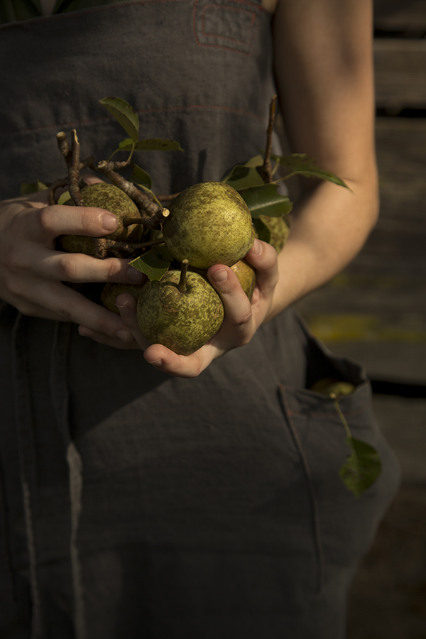 Pears (Chia Chong and Libbie Summers for Salted and Styled)