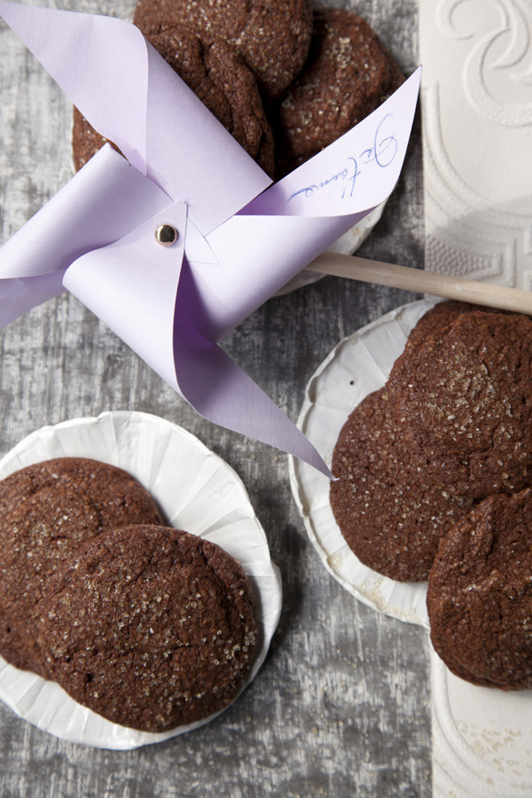Spicy Chocolate Cookies (Libbie Summers and Chia Chong for Salted and Styled)