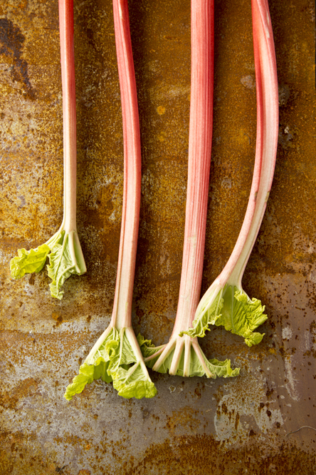 Rhubarb Stalks (Chia Chong and Libbie Summers for Salted and Styled)